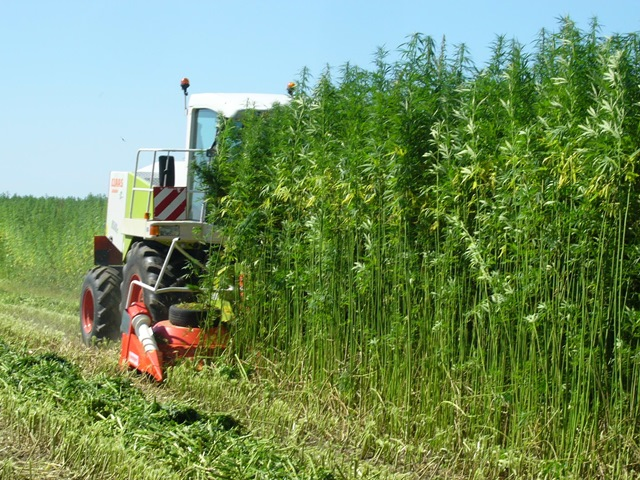 MSC to host informational meeting on Industrial Hemp Pilot Program, March 11
