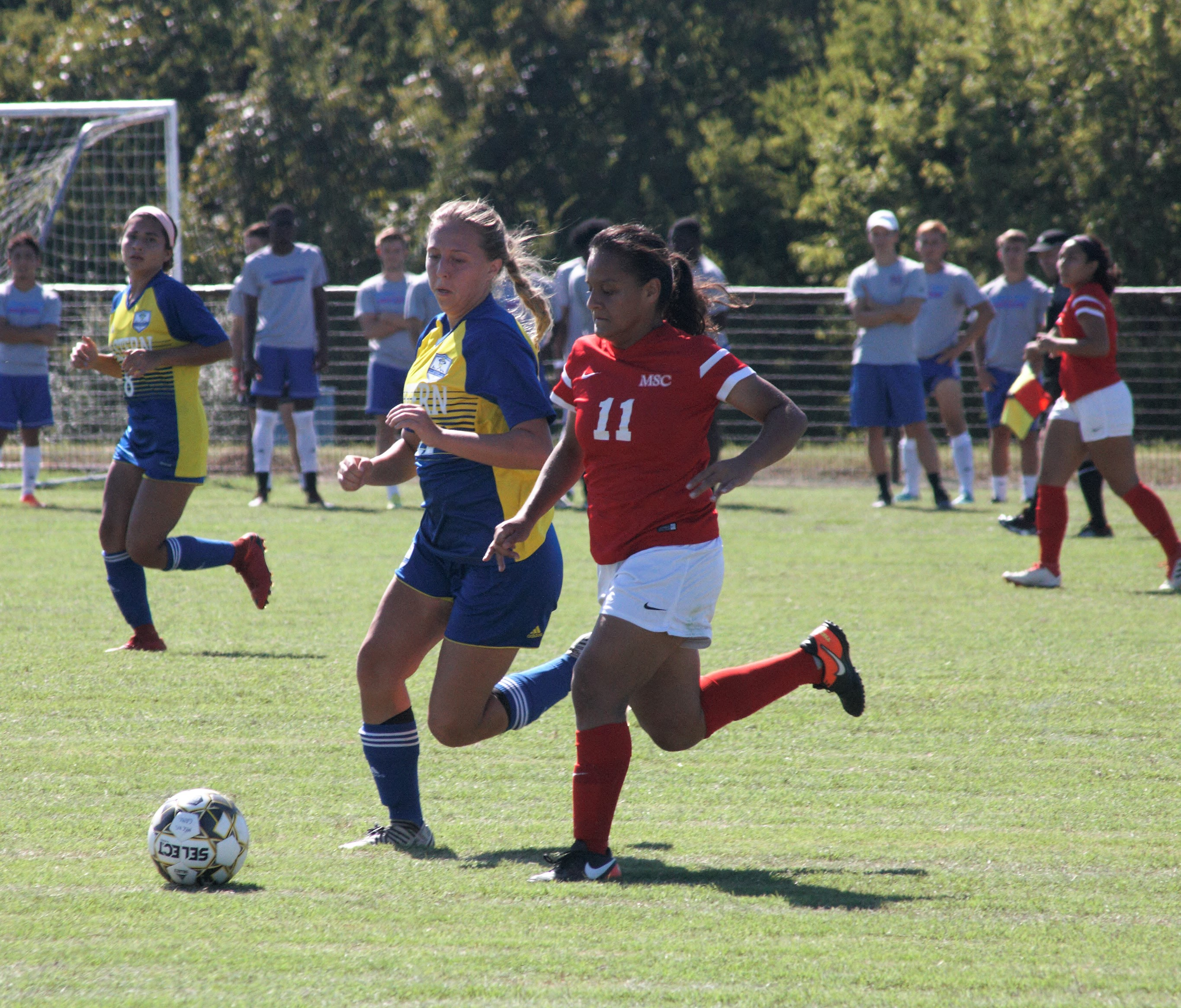 MSC Women's & Men's Soccer Teams kick off season with multiple games